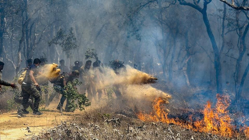 Bandipur: Rescue officials assist in extinguishing a forest fire at Bandipur Tiger Reserve, in Bandipur.