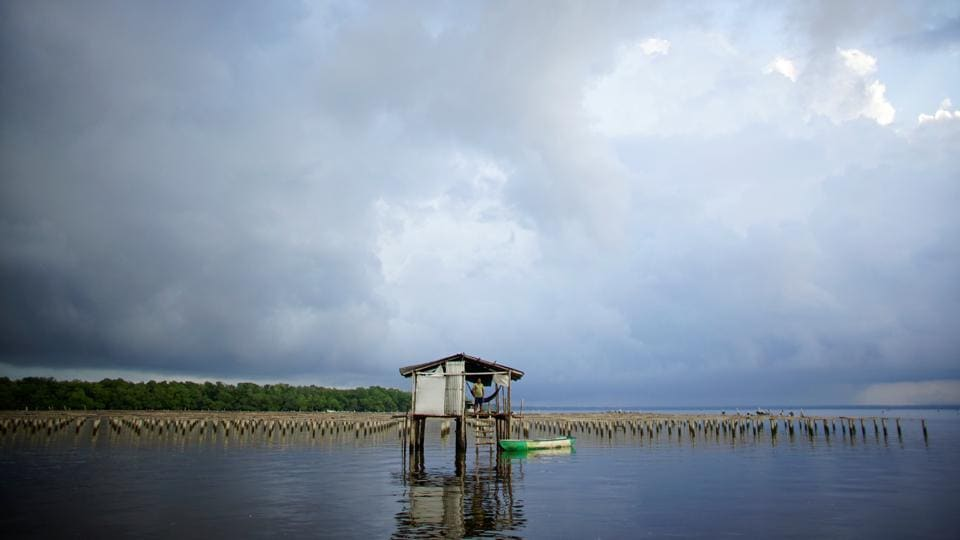 Fortunato Dominguez de la Cruz, 55, stands at a shelter where he guards an oyster farm at the Mecoacan lagoon near Paraiso, Mexico. Even before Mexican President Lopez Obrador took office last December, work had begun to cut down protected woodland on Pemex land on the coast of Tabasco state to make room for the new refinery next to the Dos Bocas port. (Alexandre Meneghini / REUTERS)
