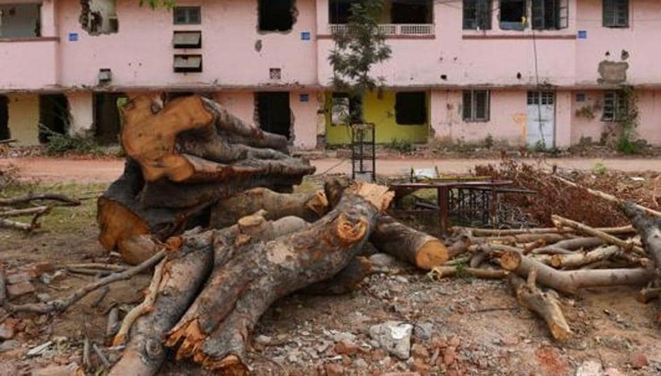 Data available with the forest department shows that at least 1.12 lakh trees were felled between 2005 and February 2018 in Delhi — an average of 24 every day.