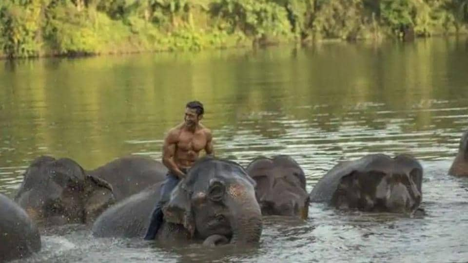Vidyut Jammwal is seen bonding with elephants in the Junglee teaser.