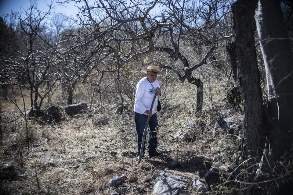 Maria Herrera is scraping at the earth on a hill in the town of Huitzuco, in southern Mexico, looking for the mounds or sunken spots that indicate a decaying corpse. At 70 years old, Herrera is hoping against all odds to find her four missing sons -- two who disappeared in 2008, and two who vanished in 2010 looking for their brothers. (Pedro Pardo / AFP)