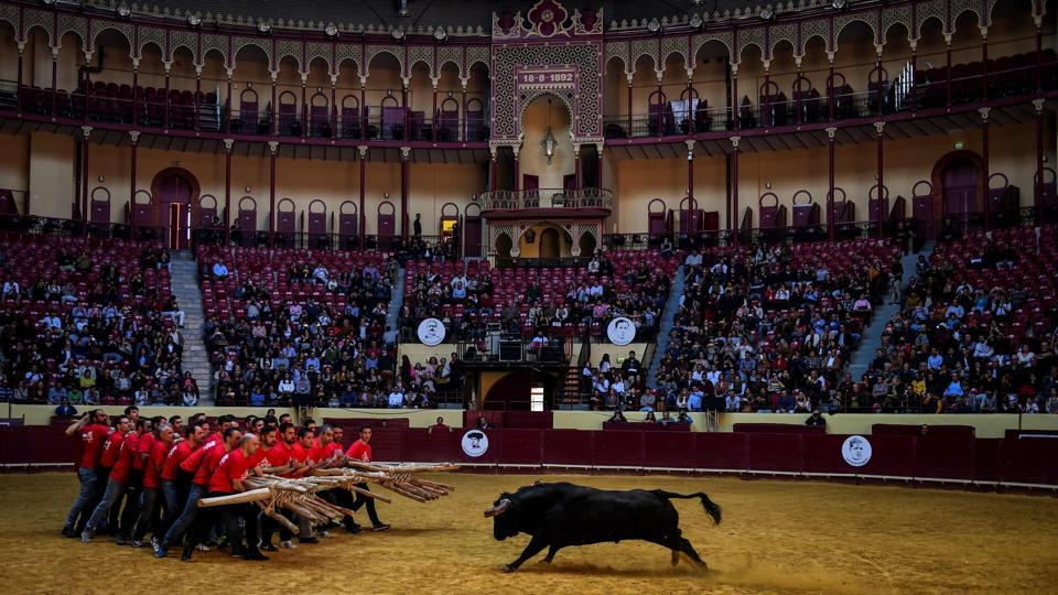 "A group of men perform the bullfight of ""Capeia Arraiana"" during the Bullfighting Day at the Campo Pequeno bullfighting arena in Lisbon, Portugal. (Patricia De Melo Moreira / AFP)"