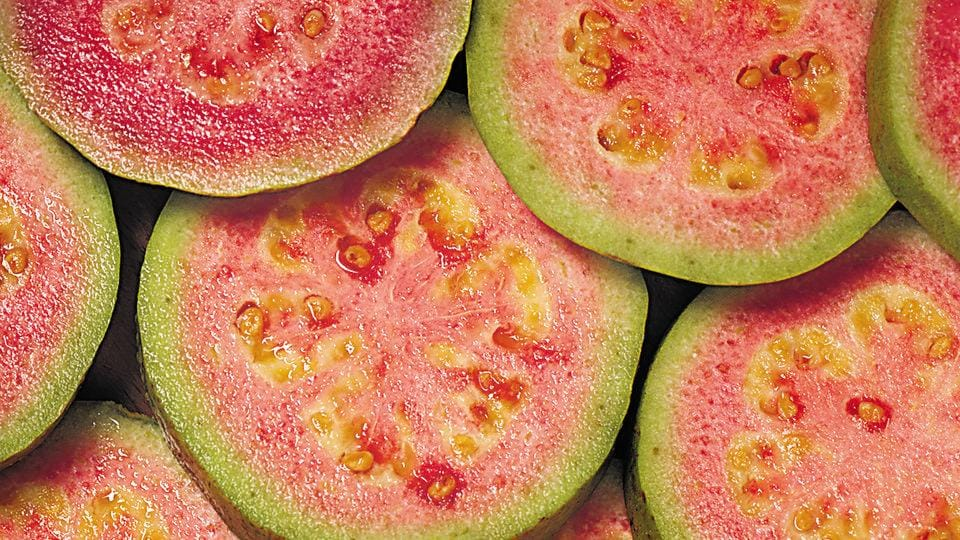 Guava is a fibrous fruit when young. it can be an excellent ingredient to substitute meats and create varied dishes.