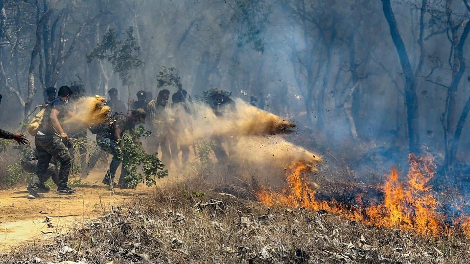 Rescue officials assist in extinguishing a forest fire at Bandipur Tiger Reserve, in Bandipur.
