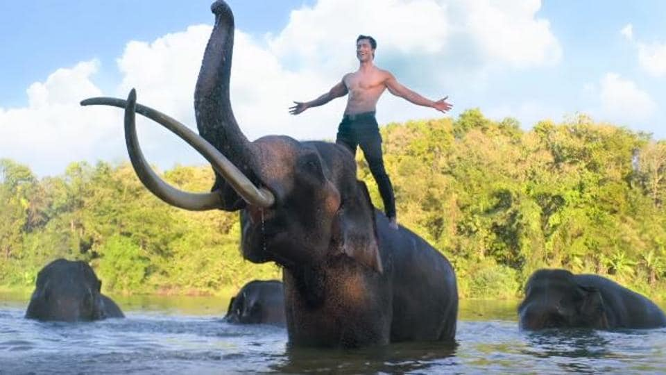 Junglee trailer: Vidyut Jammwal kicks and punches his way through this modern-day Tarzan, watch video
