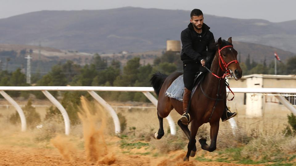 "During the war, an alleged Israeli strike hit Dimas, traumatising pregnant mares, for example. ""For a year afterwards, foals were born paralysed or dead because their mother had been so terrified,"" Ghazal said. In 2016, a horse was so shocked by a blast that, within hours, he had killed himself. ""He banged his head against metal until he died."" (Louai Beshara / AFP)"