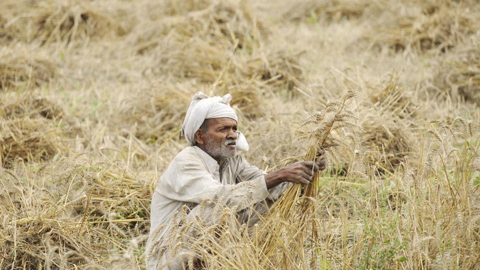 Rajasthan,Cooperative banks,BJP