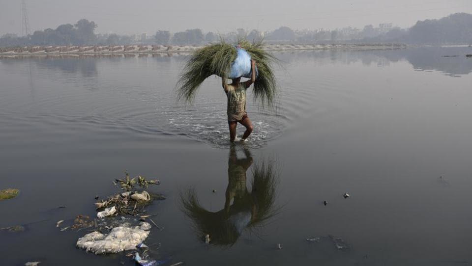 The National Green Tribunal (NGT)-appointed Yamuna pollution monitoring committee directed the north, east and south municipal corporations of Delhi (MCDs) to submit action plans on how they will achieve this.