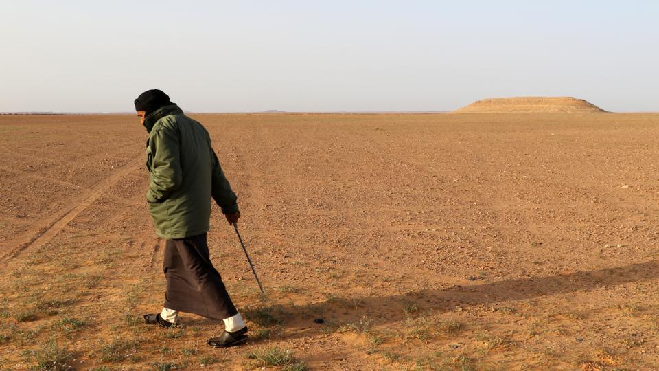 Milad Mohamad, a Truffle hunter, searches for white truffles or 'Terfas' in Al-Hamada al-Hamra desert, in Libya's western Nalut province. Terfas have been consumed since Roman times for their delicate taste as well as their nutritious and medical properties, and are sold to Gulf countries as a luxury food item. (AFP)