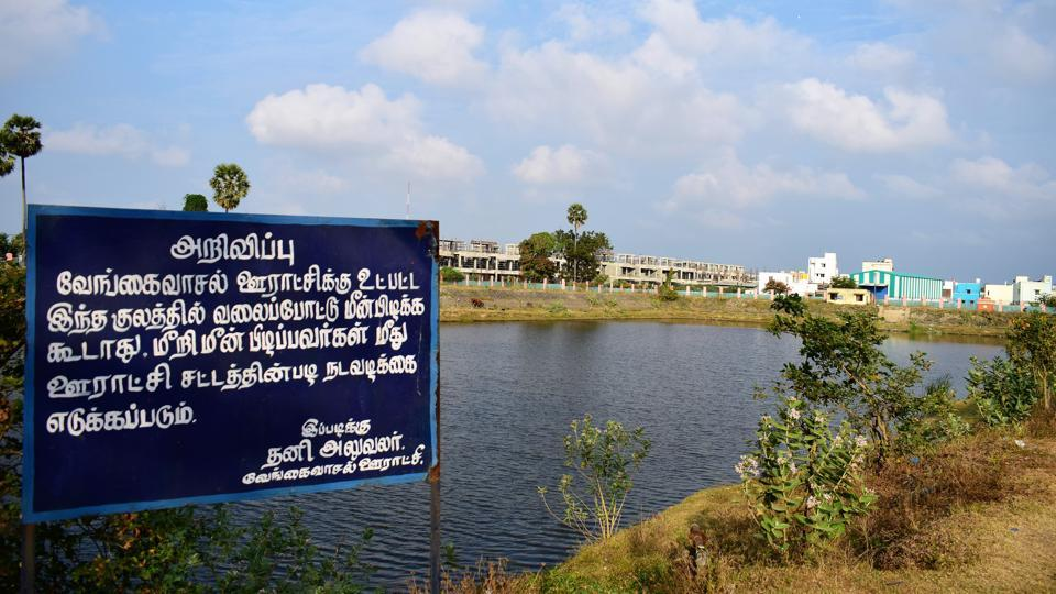 Chennai, the capital of Tamil Nadu, is facing an acute water crisis owing to the city's unchecked growth. Residents rely on water from natural resources from the outskirts of the city. In Vengaivasal, once considered the outskirts of Chennai and now subsumed by the city's suburbs, the two aeris, periyeri and chitteri, have been stubbornly protected against encroachments, construction and water pilfering by the local community. (Gayatri Jayaraman / HT Photo)