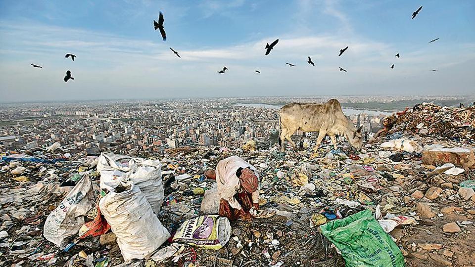 North MCD,Bhalswa,landfill