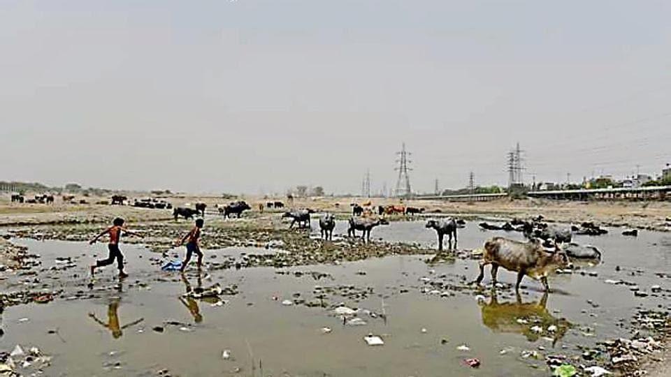 Ghonda Gujran waste plant will poison Yamuna: Experts