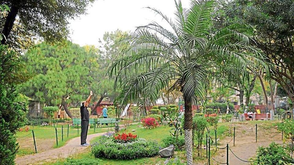 garden,art,DLF phase 2