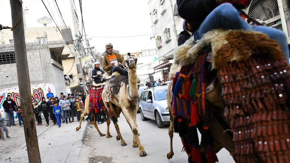"Bedouin jockeys parade their camels during a wedding party. Martinez did not know what to expect after he crossed through Israel's fortified checkpoint, past a long caged walkway leading to a dilapidated Palestinian checkpoint. His remit, Martinez thought, was to do pretty much anything but capture the clashes. ""Because everyone has seen that side of Gaza."" (Dylan Martinez / REUTERS)"