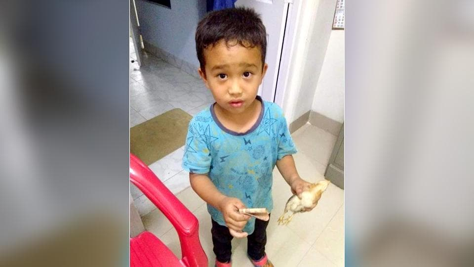 Mizoram boy, 6, runs over chicken, takes it to hospital with pocket