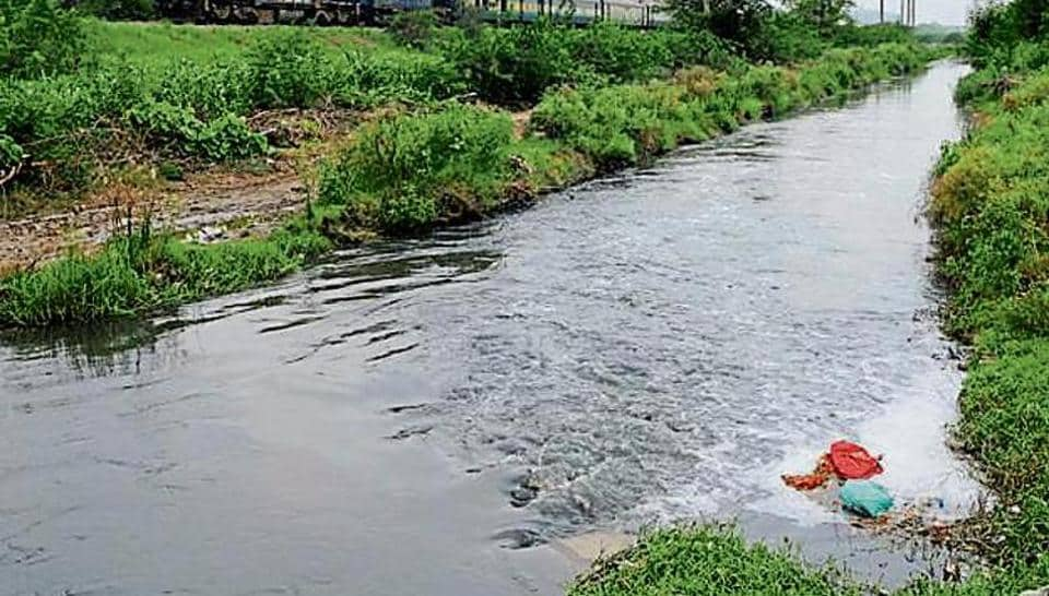 pollution,najafgarh lake,haryana