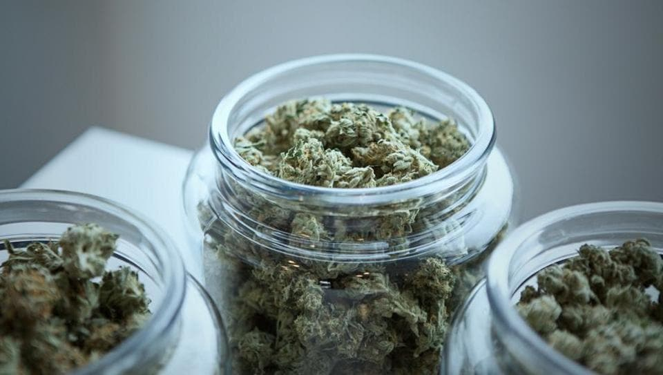 Heavy pot smokers may need higher dosage for sedation.