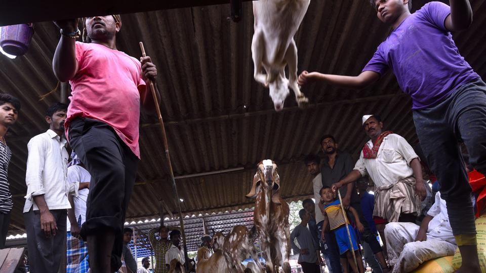 Ghazipur abattoir pollution,abattoir pollution,E corp fined