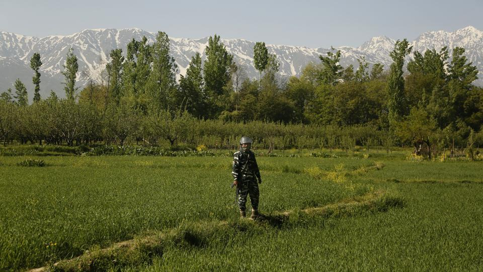 An Indian paramilitary soldier stands on a paddy field guarding outside a polling station during the third phase of India's general elections, at Verinag, Jammu and Kashmir. (Mukhtar Khan / AP)