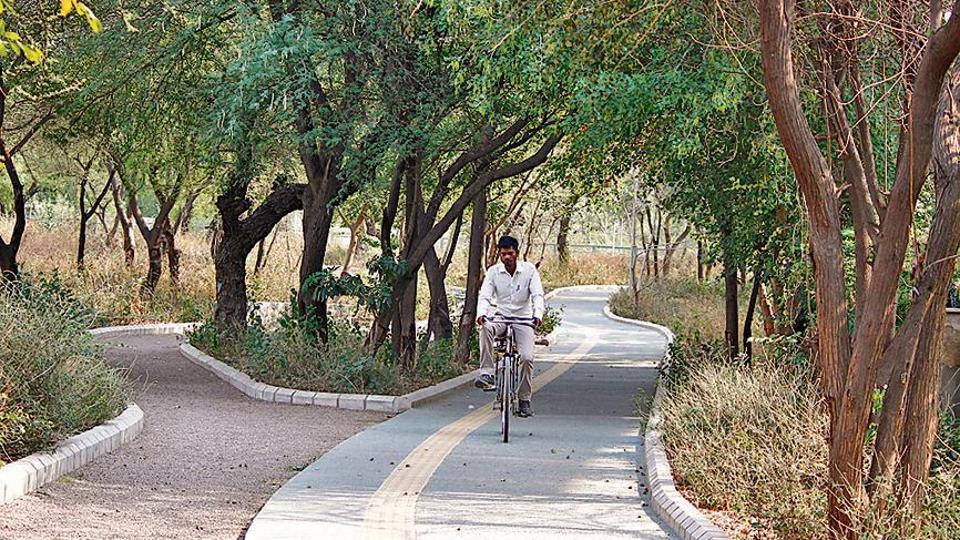 For cyclists and pedestrians travelling from Chakkarpur to Wazirabad, the cycle tracks and paths built along the bundh offer an alternative mobility route that's safer.