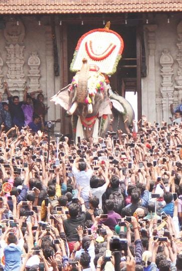 Thechikottukavu Ramachandran, a 10.5 ft tusker has been banned from public display after it killed two persons in February.