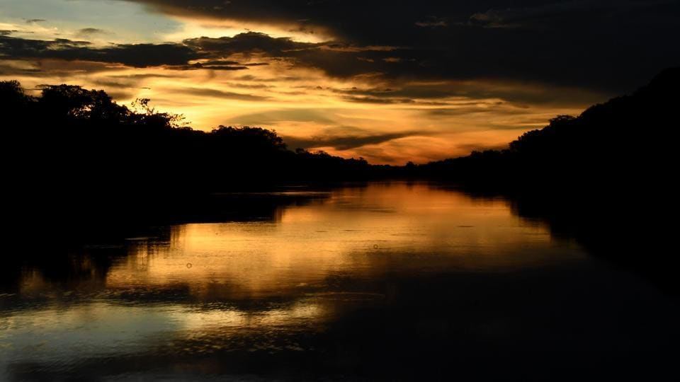 The Mamiraua River is seen at the Mamiraua Reserve.. In an attempt to collect the images and sounds of the Amazon rainforest's biodiversity to track preservation efforts, scientists are deploying ultra-sensitive sensors. The initiative, called the Providence Project, was launched two years ago and aims to propel the conservation efforts in the forest. (Evaristo Sa / AFP)