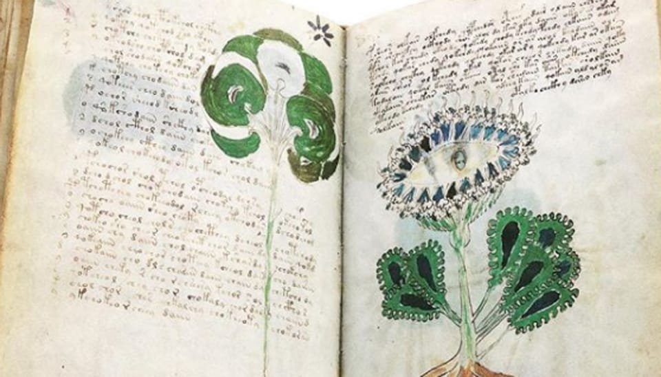 It is named after Wilfrid Voynich, a Polish-Samogitian book dealer who purchased it in 1912.