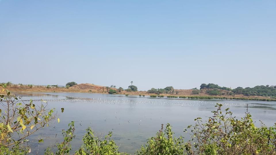 Delhi,water body,DDA