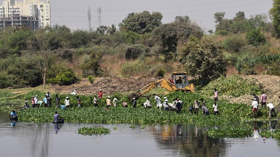 Several ponds that have dense habitation around them and become dumping grounds for locals with ample floating garbage on the surface, include the Shamsi Talab, Aya Nagar pond and Ghitorni lake.