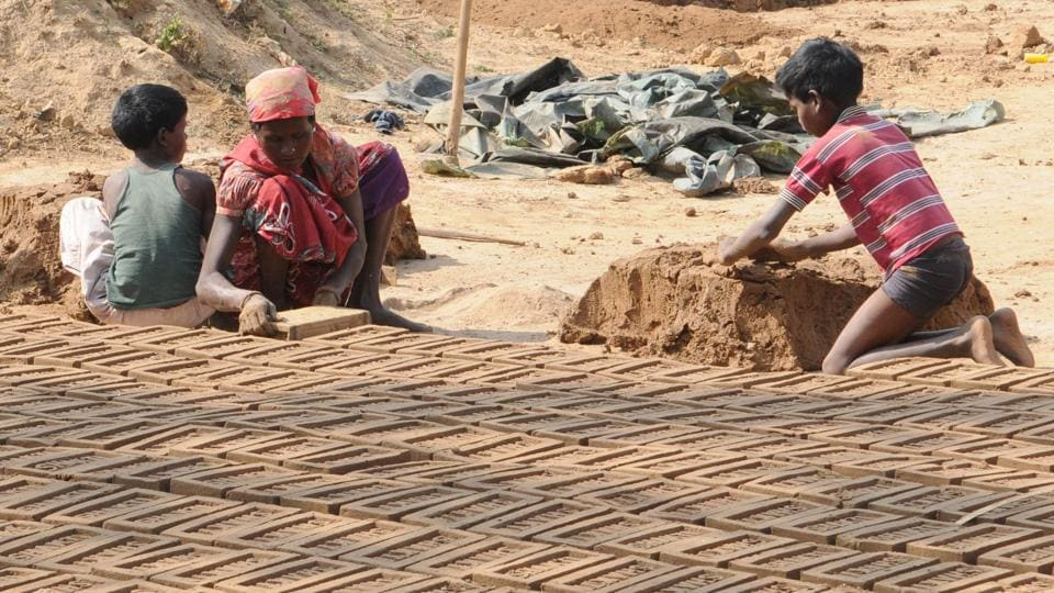 child labour,extortion,slaughterhouse