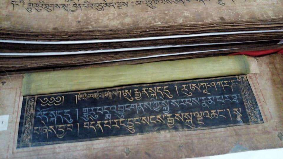 patna museum,darbhanga museum,bihar government