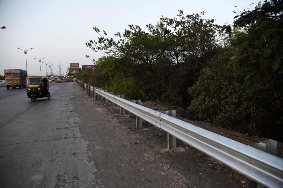 iron-railings