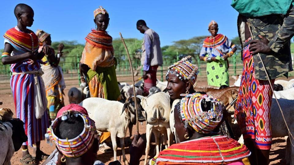 "Samburu tribeswomen gather their goats to sell in Marsabit county. ""You might go a long distance, and they die on the way... It is a very hard life,"" Kaltuma Hassan, 42, told AFP. Today, she relies on detailed rainfall forecasts received via text message from a Kenyan tech firm to plan migrations, a simple but life-changing resource for an ancient community learning to adapt to increasing weather extremes. (Tony Karumba / AFP)"