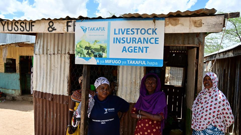 "Hadija Lenguyo (2nd L), livestock insurance agent, outside her kiosk in Merille. Helima Osman Bidu, one traditional herder and mother-of-three, has joined a women's collective that invests in non-livestock related enterprises, another approach to drought-proofing the family finances. ""It is good to have something on the side,"" she told AFP, nodding to a padlocked metal box containing the group's seed money. (Tony Karumba / AFP)"