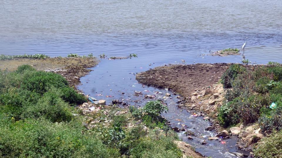 Sewage water flowing unchecked in Ganga near Rasulabad ghat in Prayagraj.