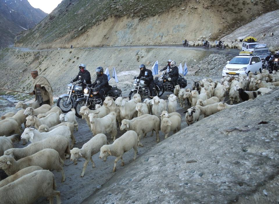 The rush for adventure and tourism in the Himalayas, the water tower of Asia, comes at a huge environmental cost. All but the most remote parts of Ladakh have been ruined by bikers