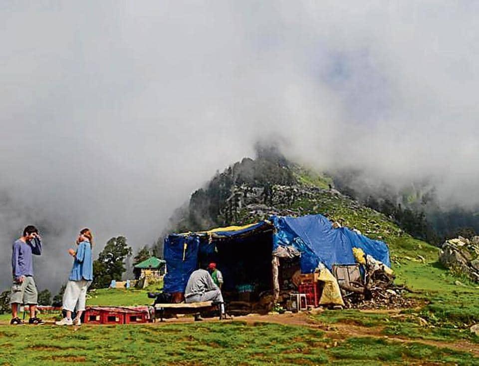 encroachment on Triund,Himachal Pradesh High Court,Dharamshala