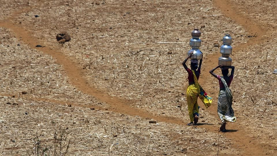 Large parts of central and northwestern India will continue to face a heat wave this week, the Indian Meteorological Department (IMD) said on Thursday.