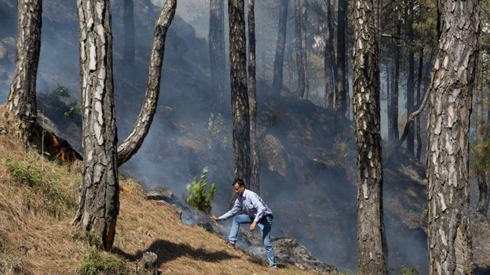 It is unreasonable and impossible that the forest department keeps putting out forest fires. This challenge needs a different engagement with the locals.