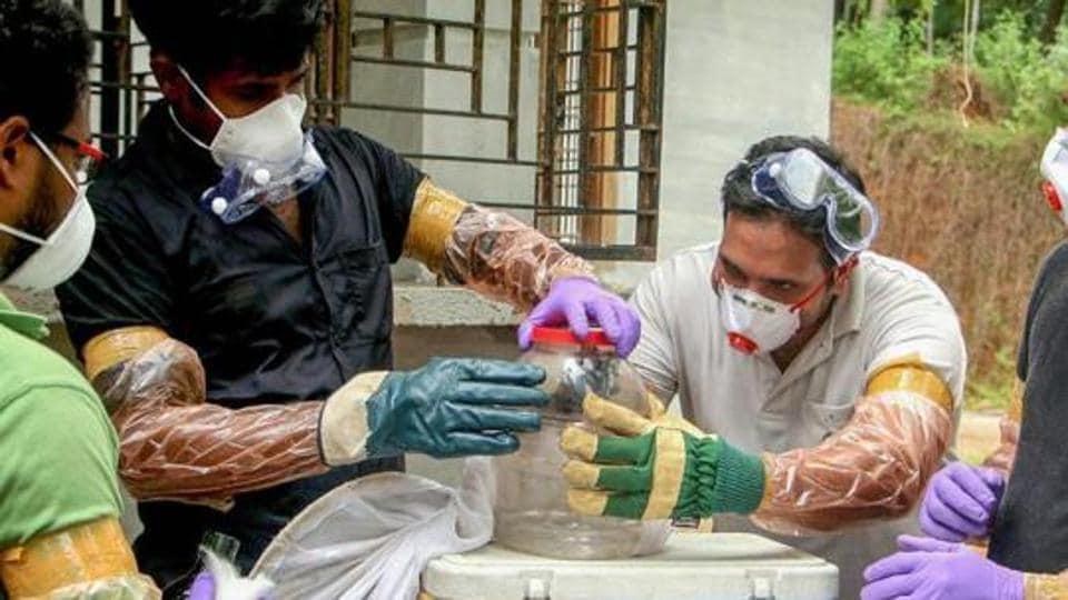 Nipah,Nipah virus,Ernakulam