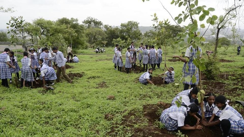 The 'Fun Utsav' was organised by GDA at the 100-acre city forest area and saw the participation of about 500-600 children.