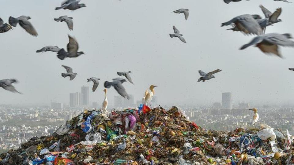 Noida,waste management,Noida authority
