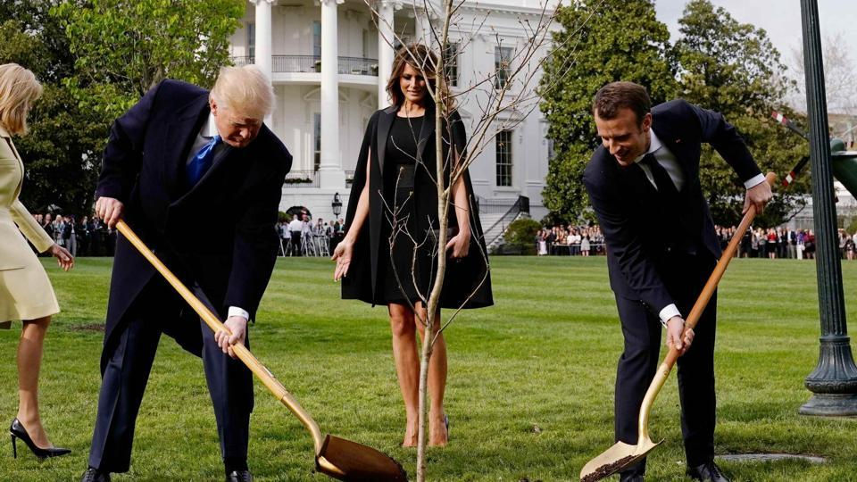Donald Trump,Emmanuel Macron,oak