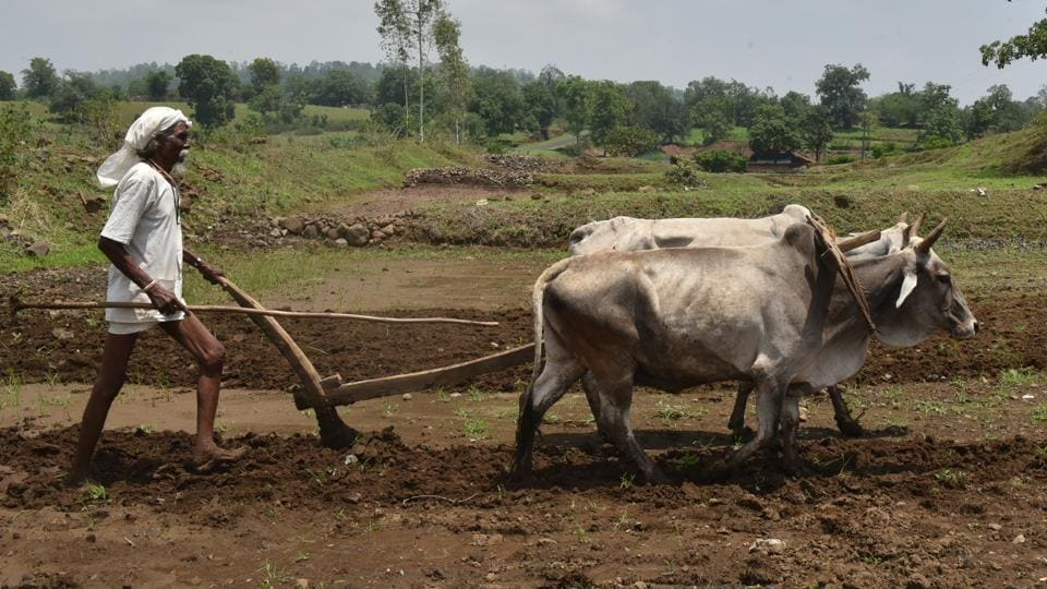 The farmers' budget must be approached holistically