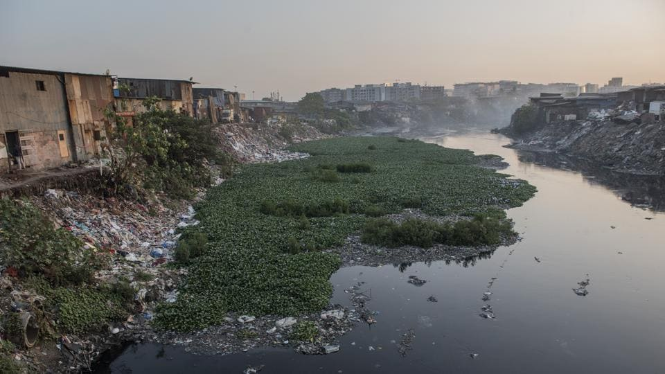 Pollution in the Mithi river has played a key role in the spread of disease.