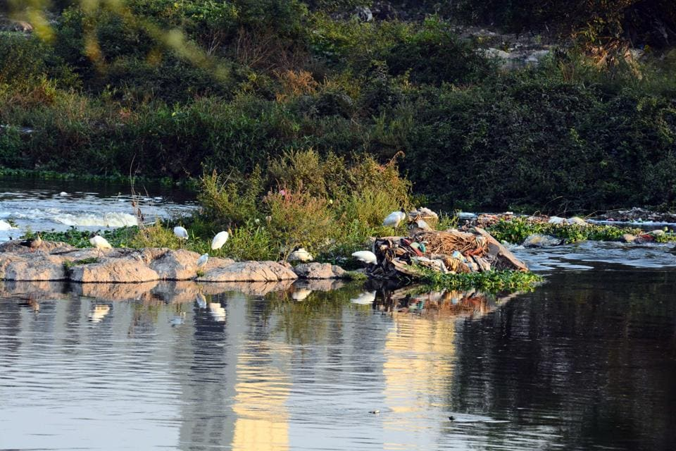 mula mutha river,garbage disposal,pune news