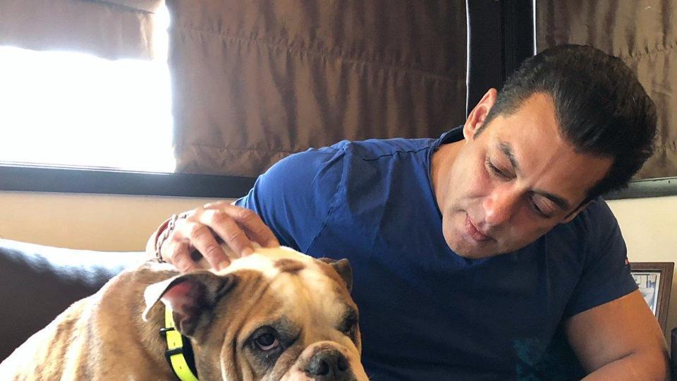 Salman Khan shares some quality time with a dog.