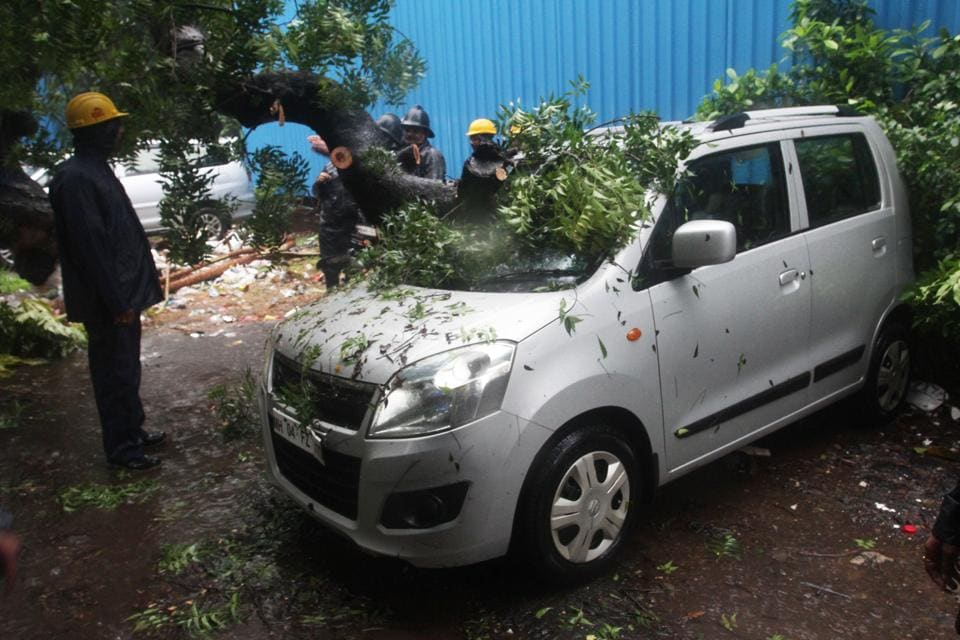 Tree collapses on two cars at Damani Estate in Thane.
