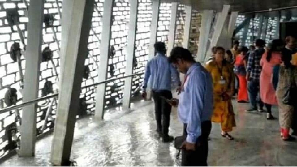 Rainwater made its way into the viewing gallery of the Statue of Unity in Gujarat, with tourists sharing videos of puddles on the floor and water dripping off the roof.