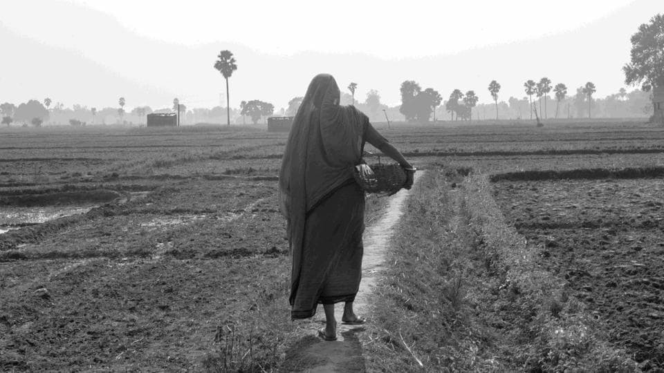 "Under the blazing sun, in her slightly torn and worn-out saree, Meendevi walks for about four kilometres back and forth, making her way through the fields to throw the waste in a manure pit. ""With the amount of discrimination we face, what else can we do to feed our stomach?"" (Sudharak Olwe)"